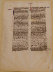 MS 2934 Bible leaf (v, Book of Tobit). Photo by Cynthia Turner Camp