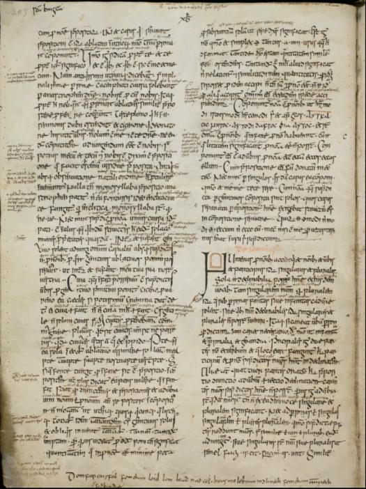 St. Gallen, Stiftsbibliothek, Cod. Sang. 904, p. 203