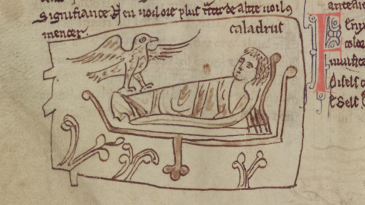An illumination of a caladrius (winged creature) by the bedside of a dying man in Merton College, MS 249, f. 8v. Reproduced with the kind permission of The Warden and Fellows of Merton College, Oxford.