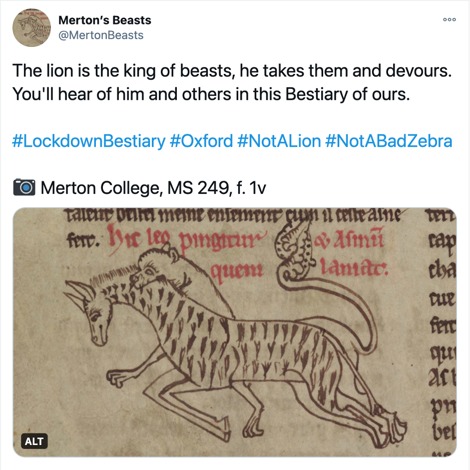 Screenshot from @MertonBeasts Twitter